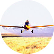 Solving agriculture's toughest issues, AeroFarms